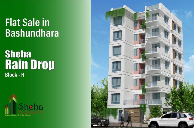 flat Sale in Bashundhara